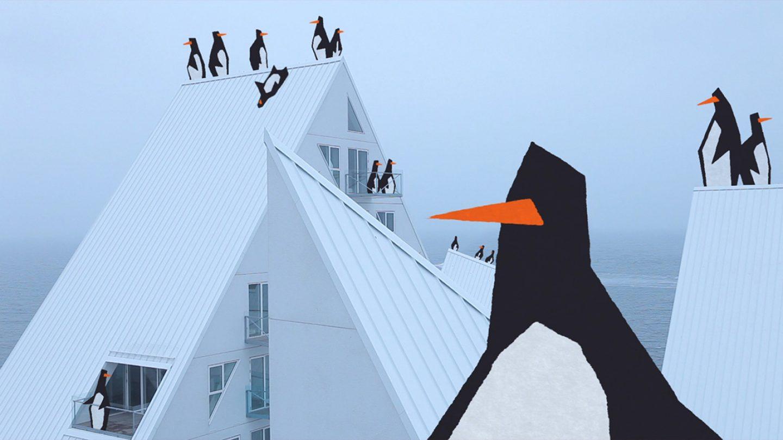 Pingouins au Danemark